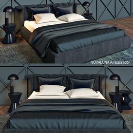 Novaluna Ambassador 3d model Download  Buy 3dbrute