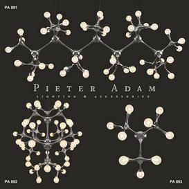 Pieter Adam Organic Atomic 3d model Download  Buy 3dbrute