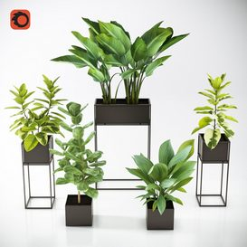 NEW Three Black Standing Planters 01 3d model Download  Buy 3dbrute