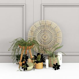 Plant decor set - 1 3d model Download  Buy 3dbrute