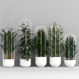 Plant set 3d model Download  Buy 3dbrute